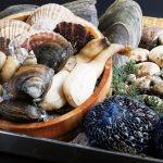 ビタミンB12の働き、食べ物、欠乏症や過剰症、吸収や葉酸との関係
